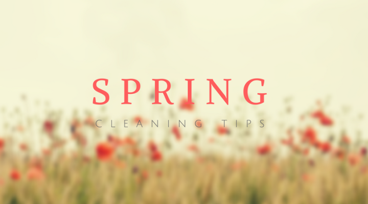 Spring Cleaning & Care for YourHome